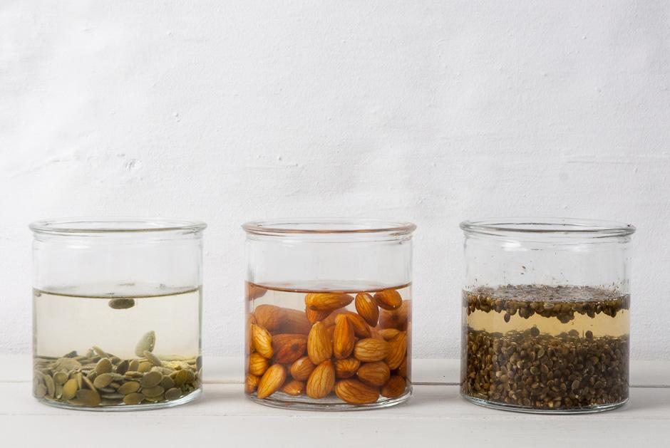 semillas-activadas